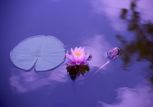 Tuo elämääsi rauhaa, tasapainoa ja hyvinvointia rentoutushetkien avulla.